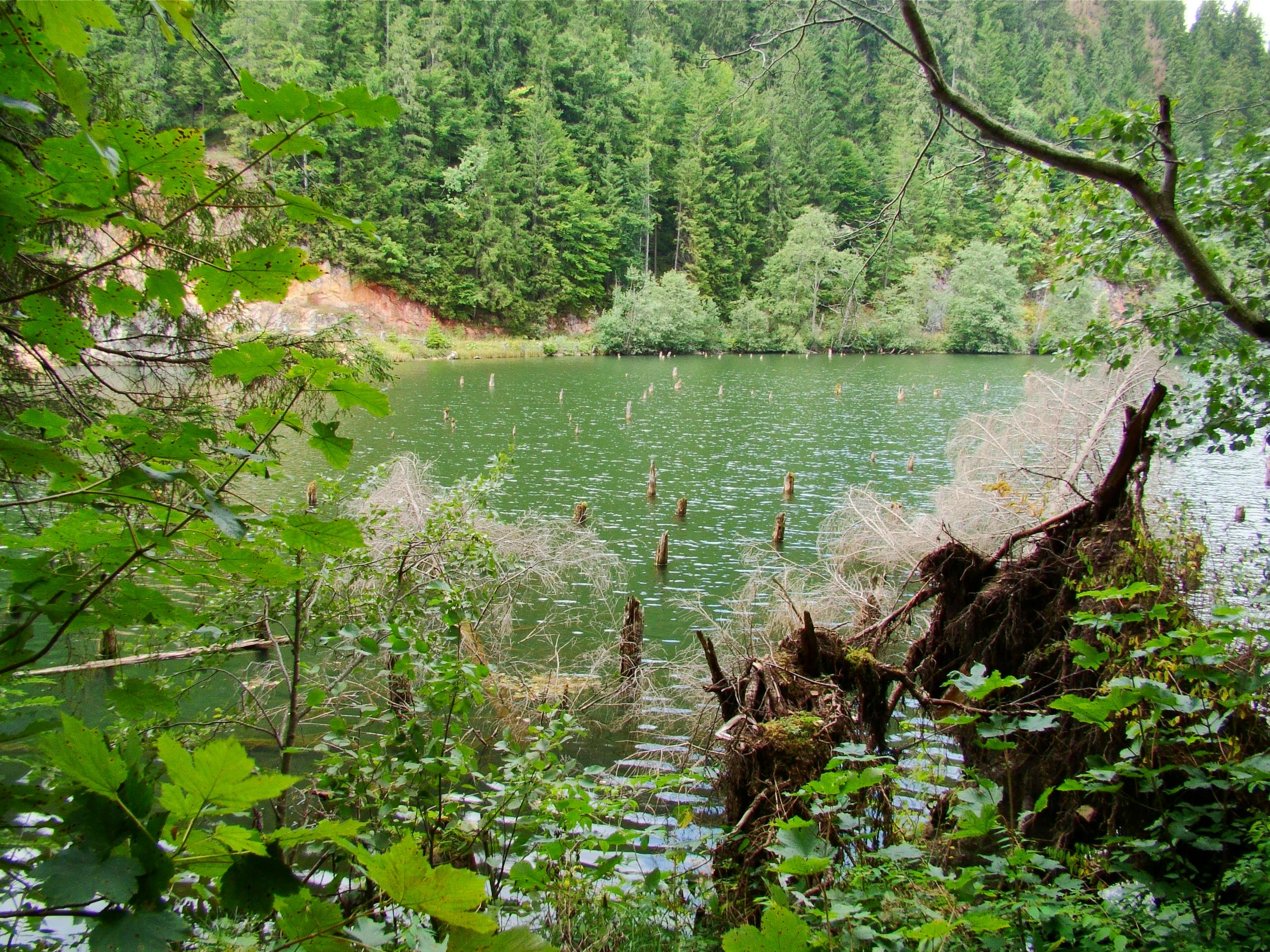 Zaujímavé prírodné úkazy Rumunska (2.časť)